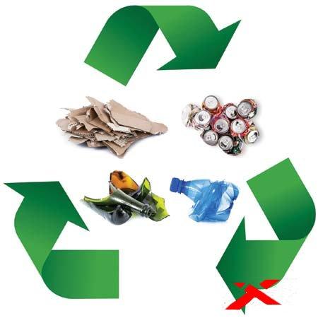 Переработка отходов: польза для экологии и выгода для себя