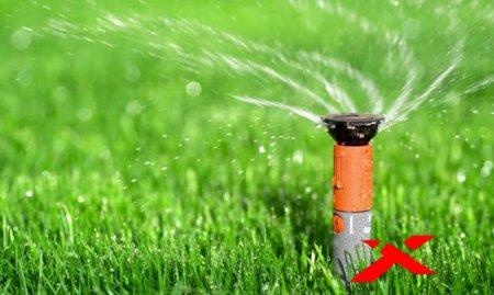 Поливаем газон