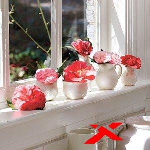Зимние цветы в декоре