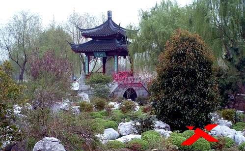 Принцип создания китайского сада