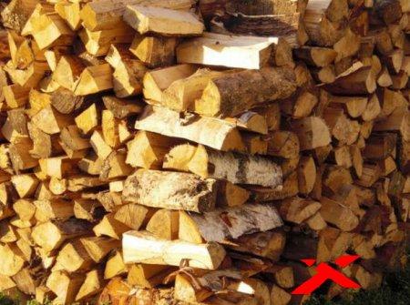 Полезные советы по выбору дров