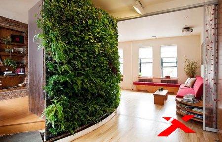 Вертикальное озеленение или Творческий подход к своему дому