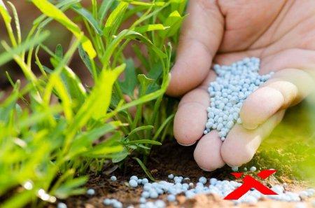 Виды удобрений и их польза